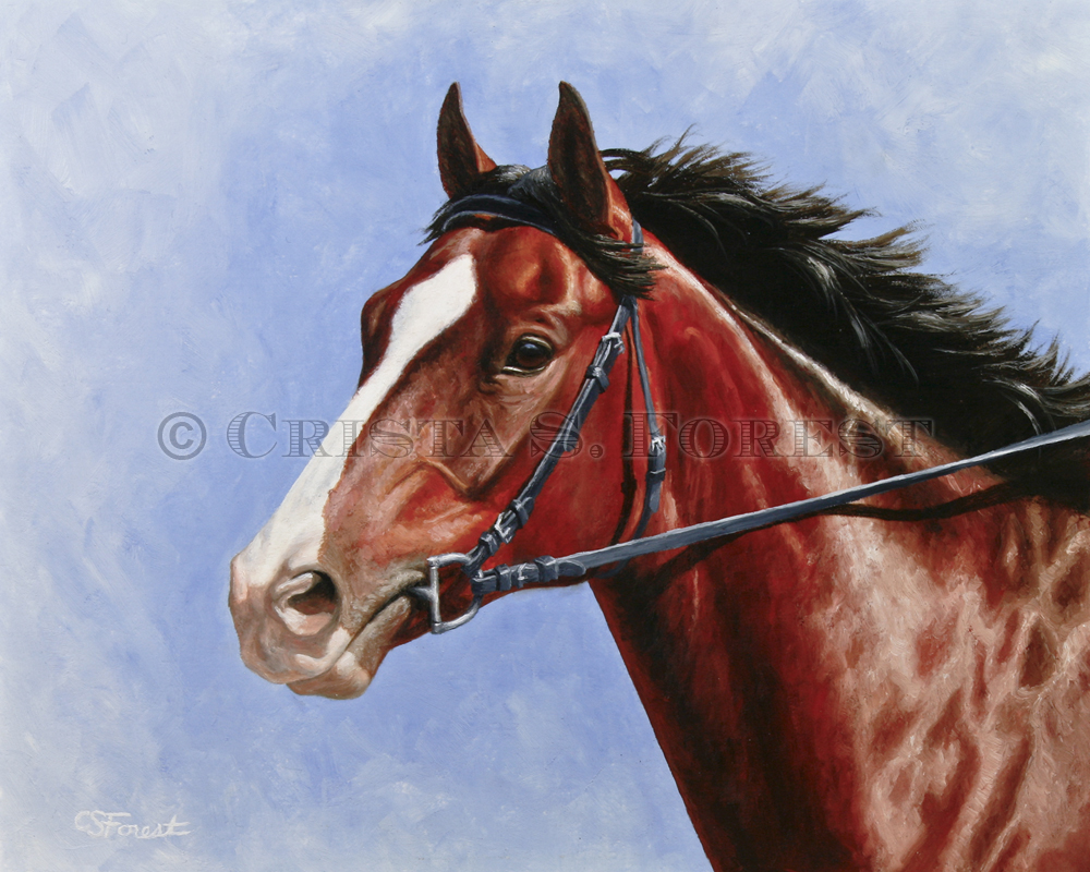 Oil painting of blood bay horse by equine artist Crista Forest, ForestStudios.com. Fine Art Prints available