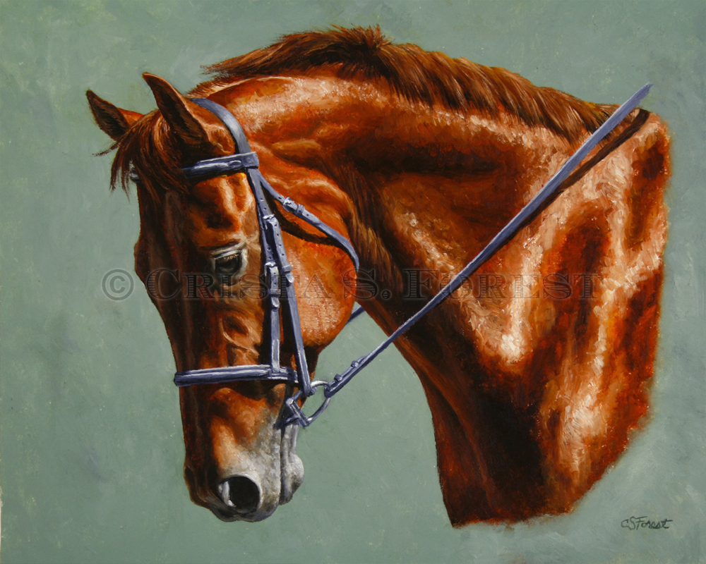 Oil painting of chestnut dressage horse by equine artist Crista Forest, ForestStudios.com. Fine Art Prints available