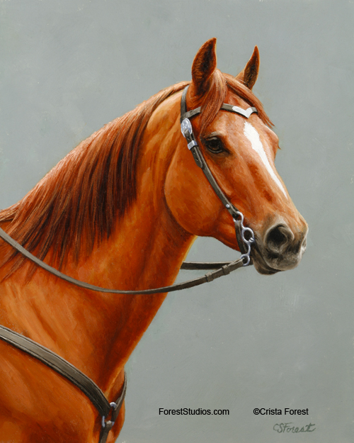 Oil painting of red dun horse by equine artist Crista Forest, ForestStudios.com