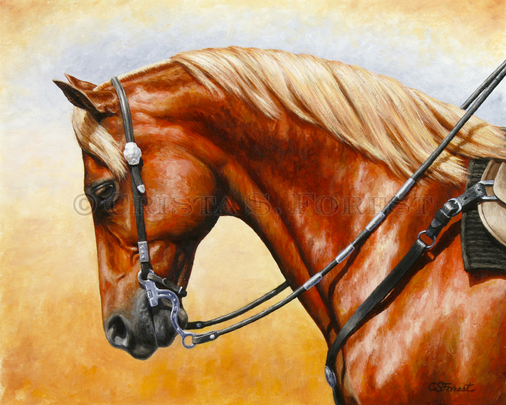 Crista Forest Equine Art   Horse Paintings and Prints